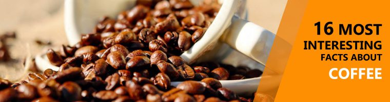 16 most interesting facts about coffee